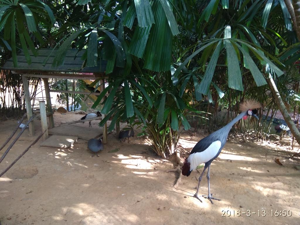 Langkavi Wildlife Park