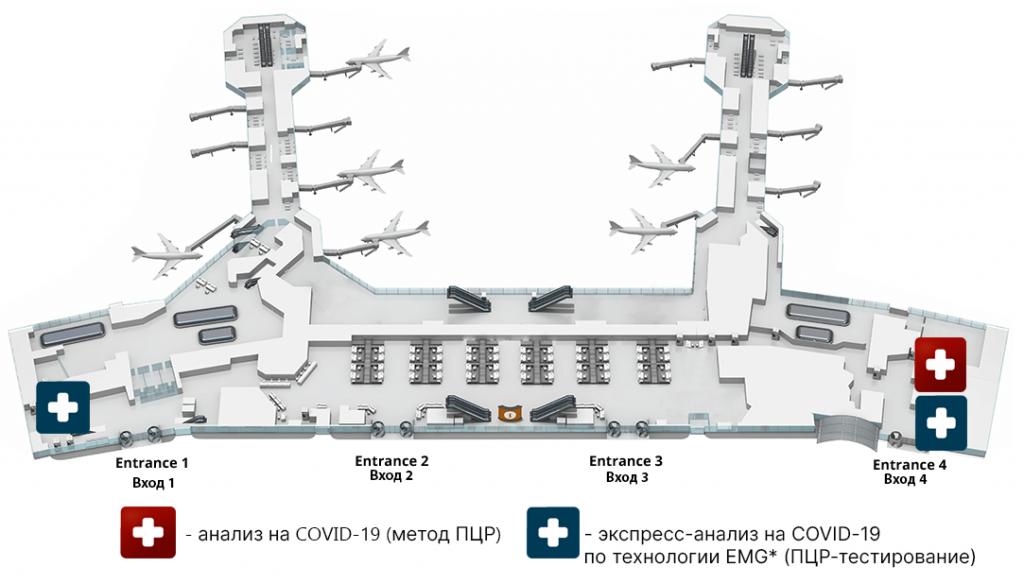 Где получить справку об отсутствии коронавируса в Домодедово