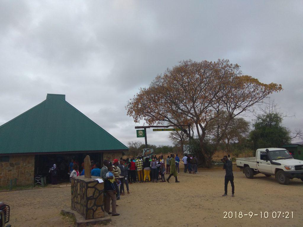 Сафари с Занзибара в национальный парк Микуми.