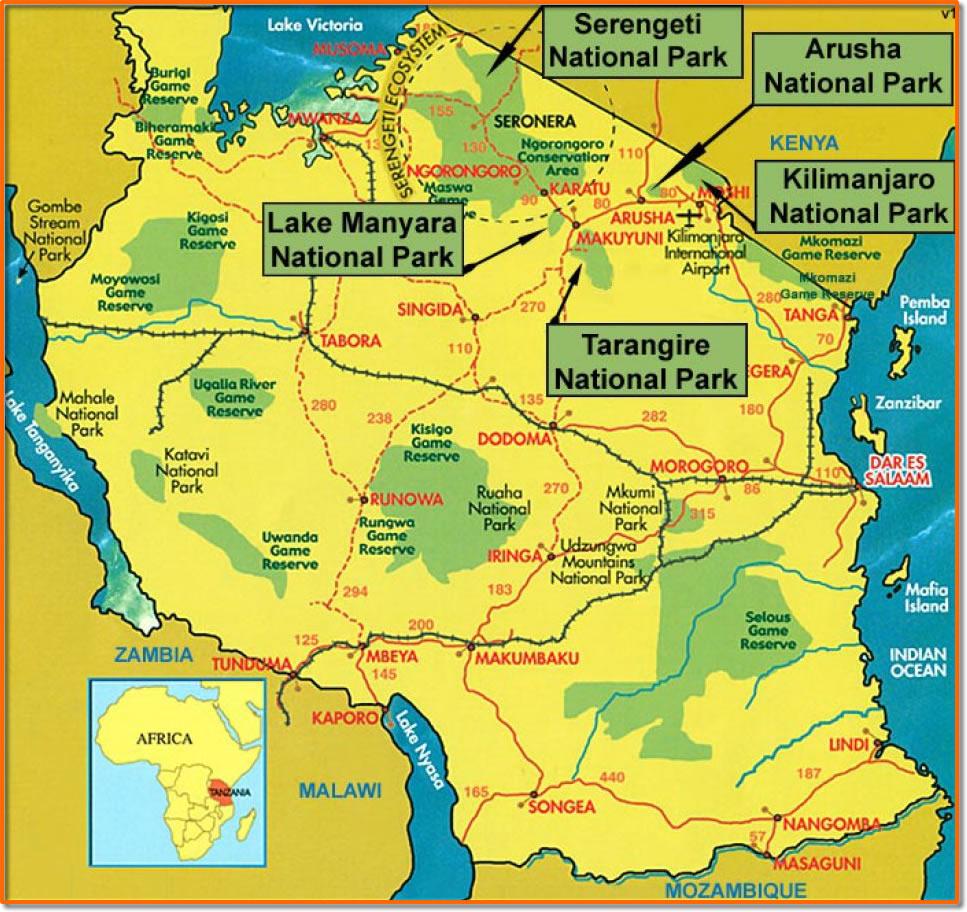 Национальные парки Танзании.
